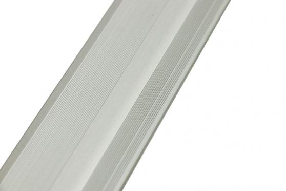 Adjustable Ramp Silver 0.9m