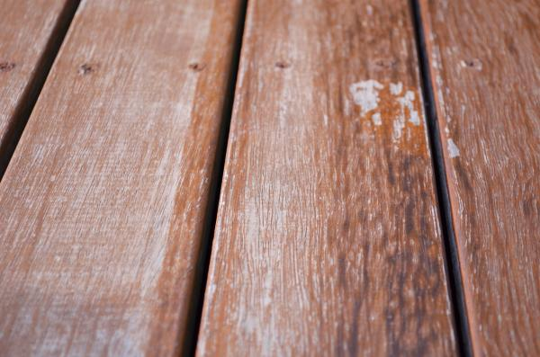 Decking Timber 5 Crucial Points to Bear in Mind
